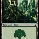 Forest – Ravnica