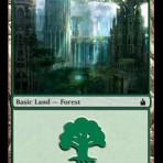 Forest (B) – Ravnica