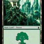 Forest (C) – Ravnica