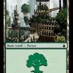 Forest (D) – Ravnica